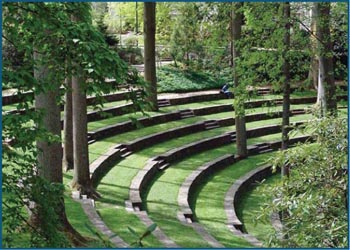 Woodneath's Future Outdoor Amphitheatre
